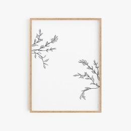 Herbarium I