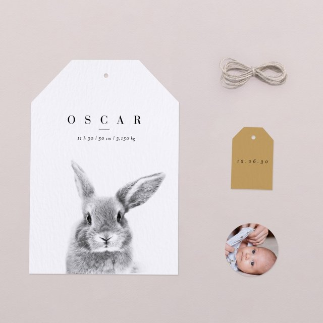 Scandi Bunny